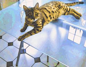 Bengal Tiger Cat On Table